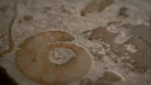 ¿Por qué hay que  poner un suelo de mármol?